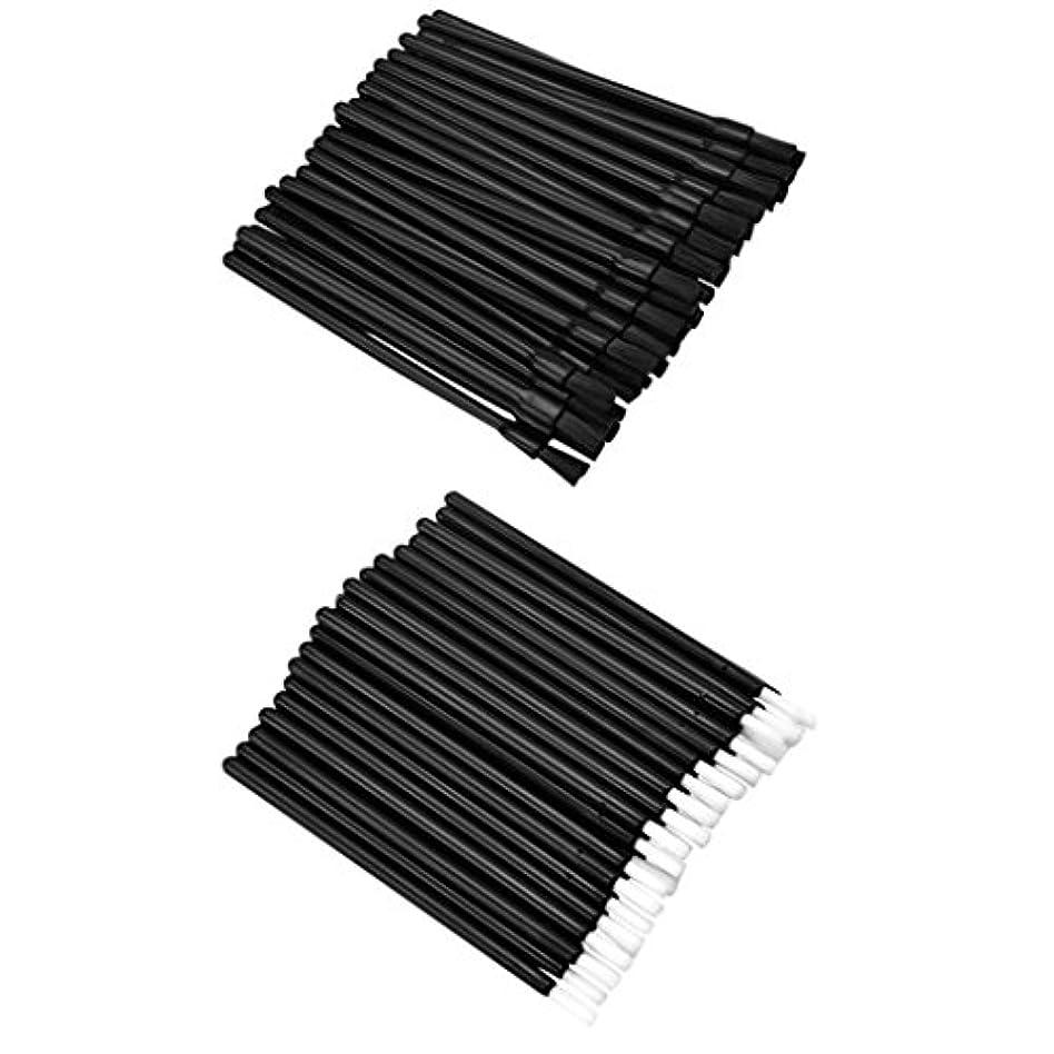 保護する状神秘的なDYNWAVE リップブラシ ロット リップ ブラシ 使い捨て 繊維 リップ メイクブラシ 約100個