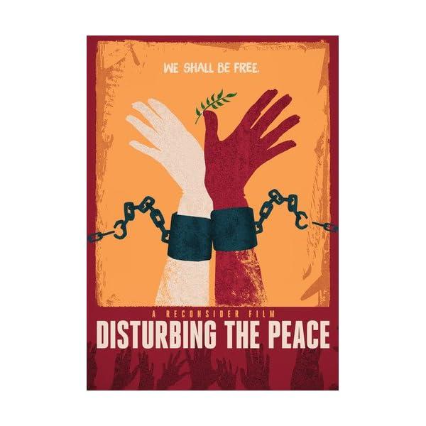 Disturbing the Peace [DV...の商品画像