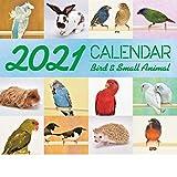 バード&スモールアニマルカレンダー 2021