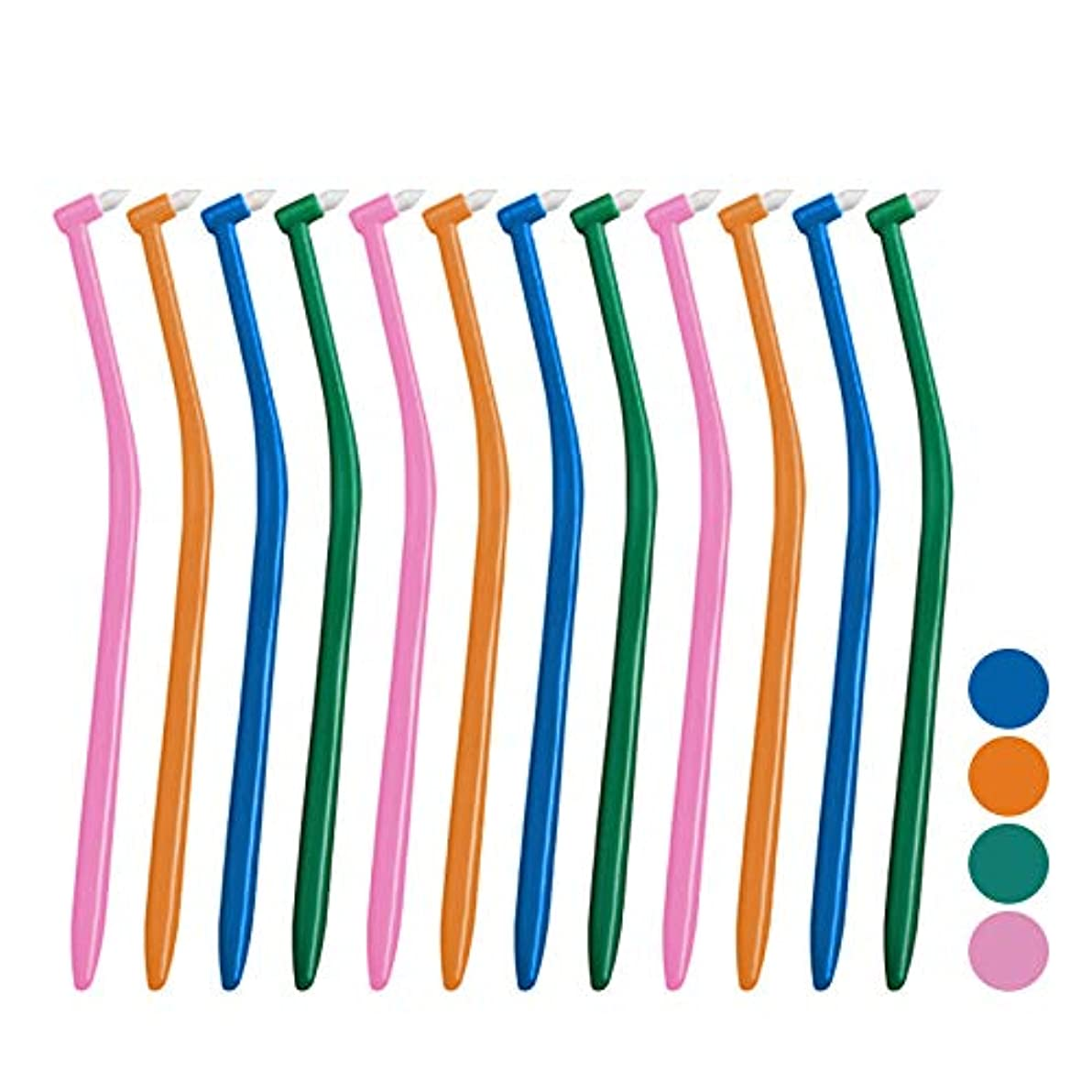 ドレス好色な繰り返したサムフレンド p(ピー) シリーズ ピー アリーボ (ワンタフト) × 12本セット (ミディアム)