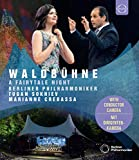 ヴァルトビューネ・コンサート 2019 (Waldbuhne 2019 - A Fairytale Night / Berliner Philharmoniker | Tugan Sokhiev | Marianne Crebassa) [Blu-ray] [Import] [日本語帯・解説付]
