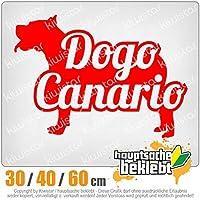 KIWISTAR - Dogo Canario named Dog 15色 - ネオン+クロム! ステッカービニールオートバイ