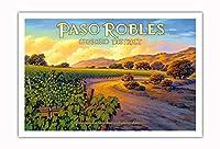 Paso Robles - ジネセオ地区 - セントラルコーストAVAブドウ園 - カリフォルニアワインカントリーアート によって作成された - アートポスター - 76cm x 112cm