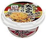 永谷園 カップ天ぷら茶づけ 168.5g×6個
