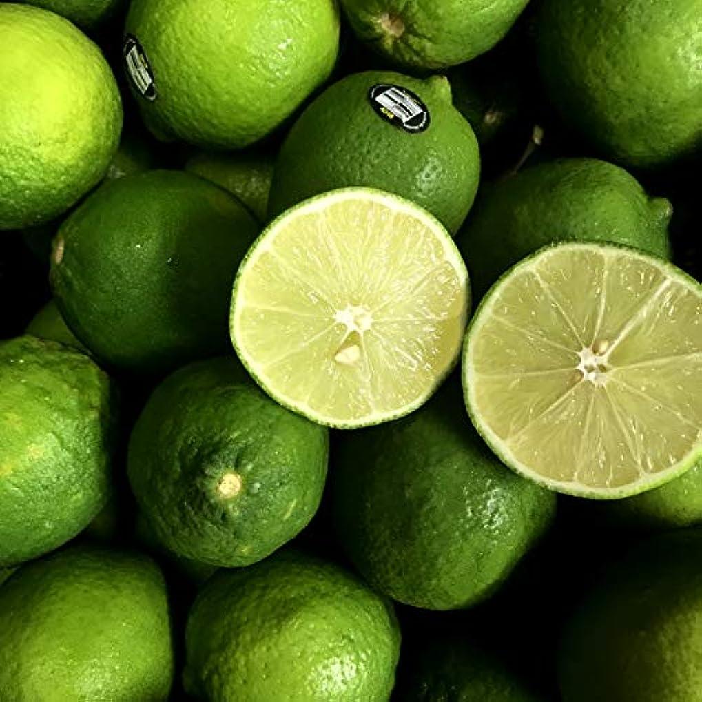 保険関係副ライム 約1kg (8玉) 柑橘 フルーツ 果物 まとめ買い 家庭用 業務用 飲食店 バー 輸入