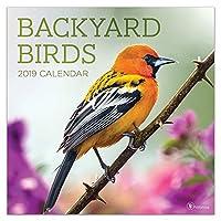 Backyard Birds 2019 Calendar
