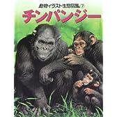 動物イラスト生態図鑑 7 チンパンジー