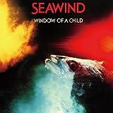 WINDOW OF A CHILD(紙ジャケット仕様) 画像