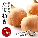 淡路島産 玉ねぎ L,2Lサイズ 5kg詰め 玉葱 たまねぎ