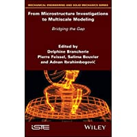 From Microstructure Investigations to Multiscale Modeling: Bridging the Gap (Mechanical Engineering and Solid Mechanics) (English Edition)