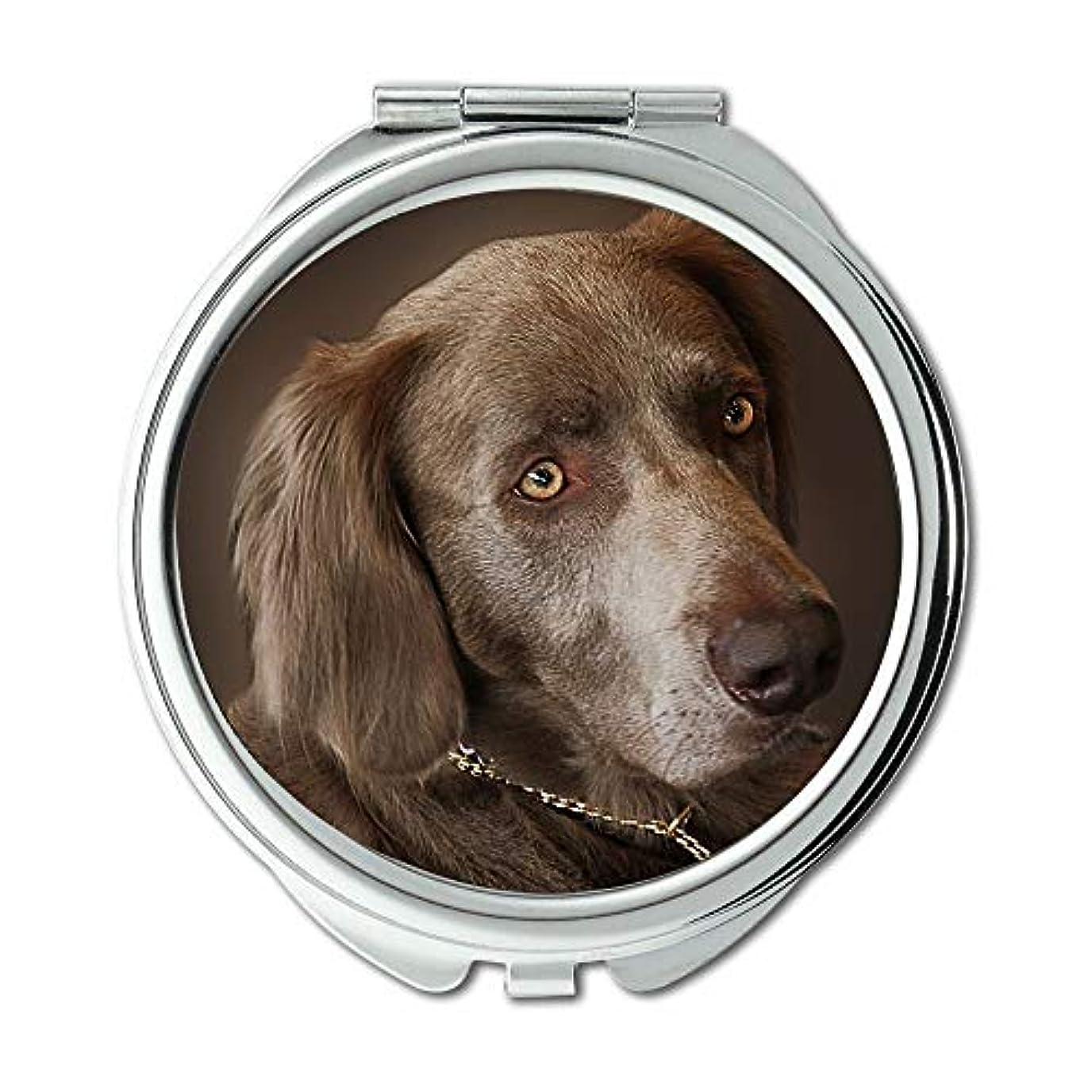 ミラー、コンパクトミラー、ワイマラナー犬狩猟犬動物肖像画ペット、ポケットミラー、携帯用ミラー