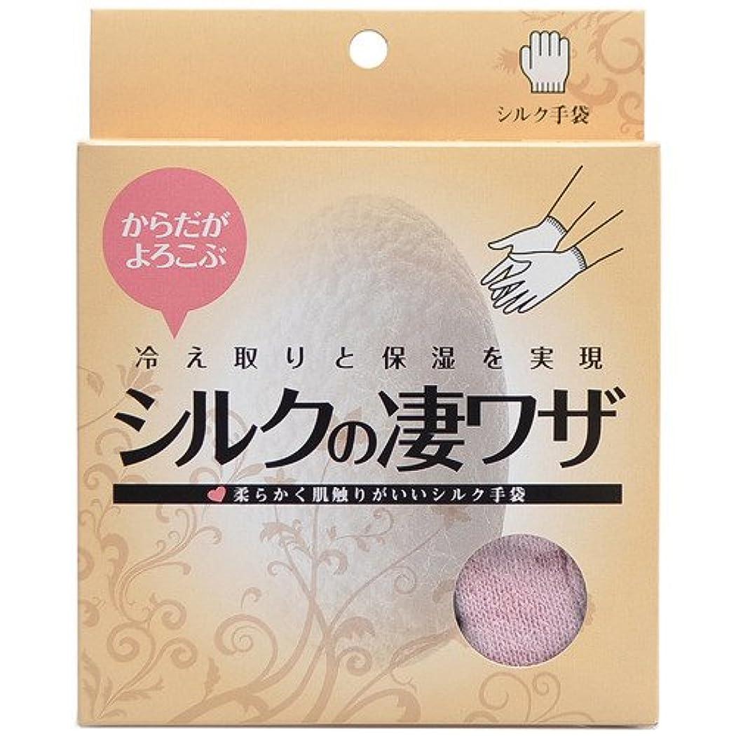 シルクの凄ワザ シルクDE手袋 ピンク 日用品 ハンドケア ハンドトリートメント手袋 [並行輸入品]
