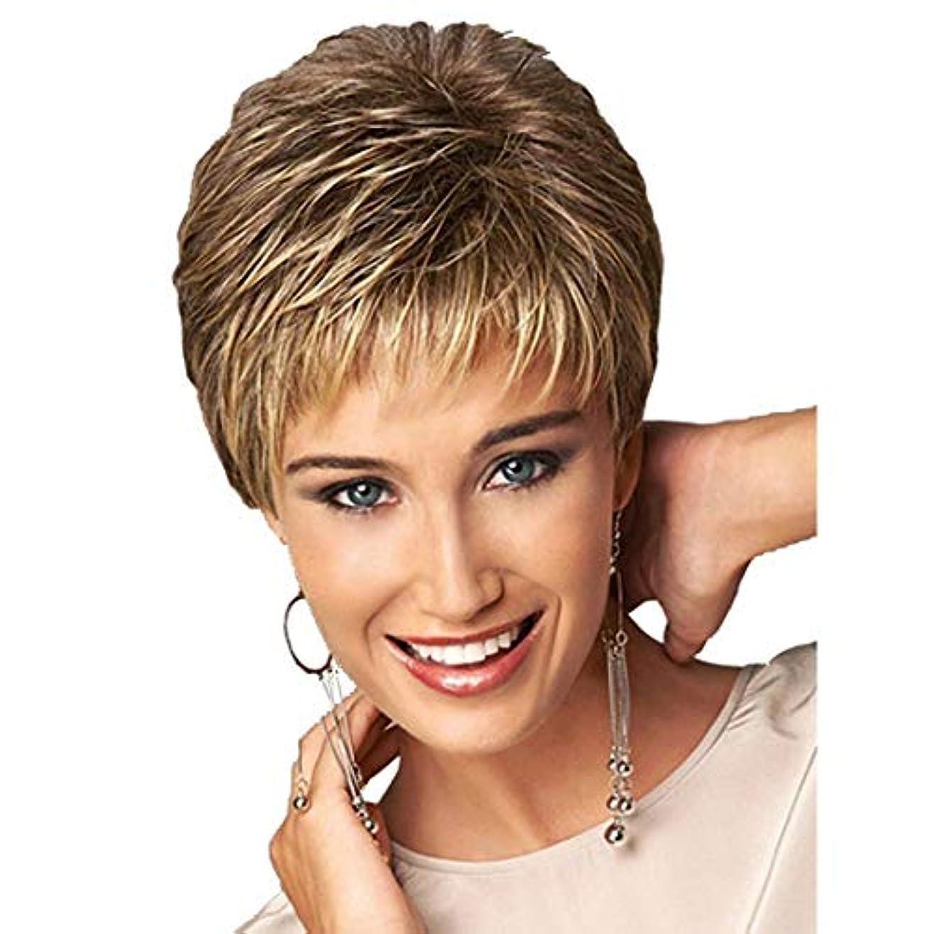 テロリスト誕生日アパルYOUQIU 女性の耐熱ウィッグナチュラルヘアのかつら用オンブルブラウン12