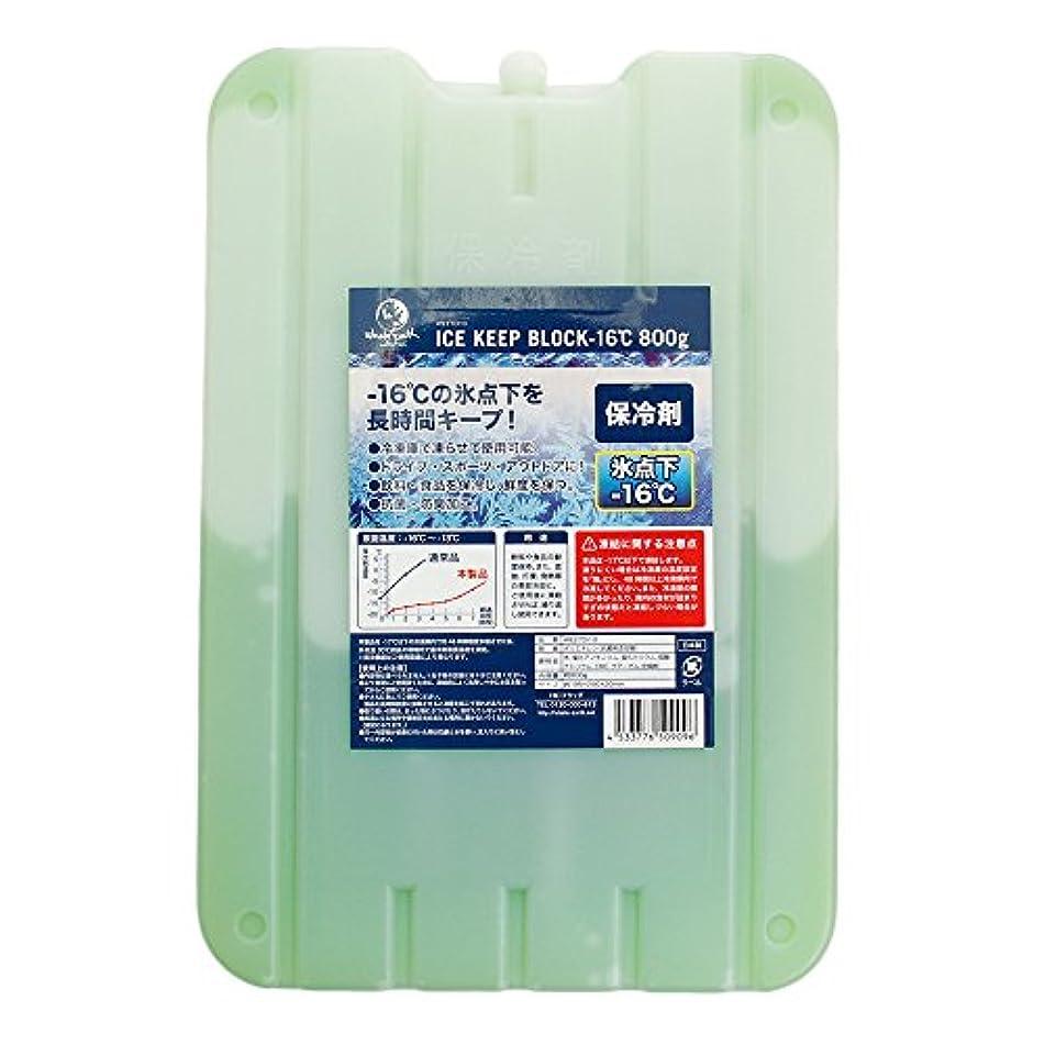 クランプ永遠の受粉者ホールアース(ホールアース) ICE KEEP BLOCK -16℃ 800g 保冷剤 WE27DI10