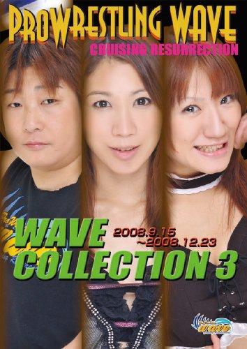 プロレスリングWAVE コレクション3【値下げ販売中!】 [DVD]