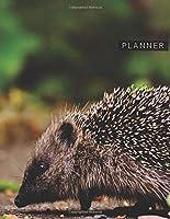 Planner: Hedgehog 2 Year Weekly Planning Organizer | 2020 - 2021 | Animal World Nocturnal Cover | January 20 - December 21 | Writing Notebook | Productive Datebook Calendar Schedule | Plan Days, Set Goals & Get Stuff Done