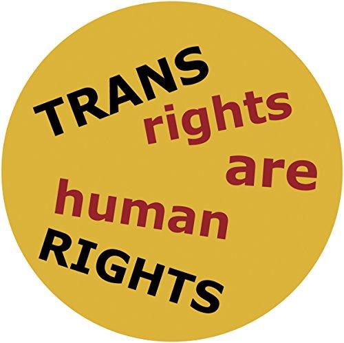 TRANS RIGHTS - LGBTQ Original Artwork STICKER, Extra Durable DECAL, 4