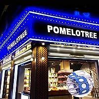 Storefront LEDライト LEDモジュールライト Pomelotree 防水ウィンドウLEDライト ビジネス装飾ライト 12V COB SMD LEDライト 広告サイン用 200LM 20フィート (2個パック) ブルー