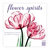 Flower Spirits — Radiographs of Nature by Steven N. Meyers 2019 Calendar