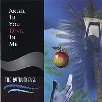 Angel in You Devil in Me