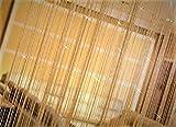 キラキラ光る 紐のれん ストリングカーテン ひものれん 目隠し シャンパン ゴールド 95×200cm