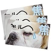 《犬らくがき/焦》ぽち袋3枚セット☆面白お年玉袋/ポチ袋通販☆