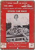 Stock Car Race ティンサイン ポスター ン サイン プレート ブリキ看板 ホーム バーために