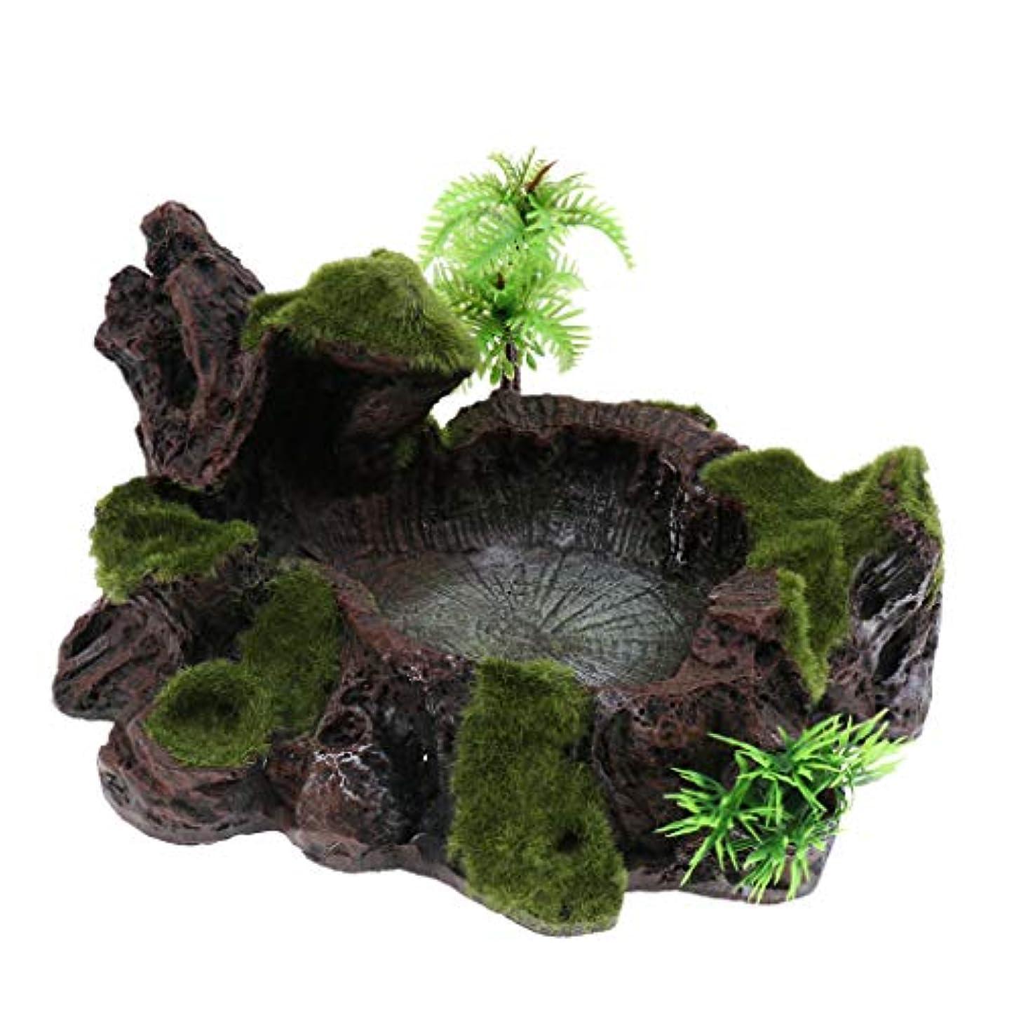 文庫本りんご北へGeneric 植物苔テラリウム爬虫類タンク用装飾用樹脂ロークボウル食用水ディッシュフィーダープレート