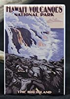 Hawaii Volcanoes National Park Refrigerator Magnet. by Player One Collectables