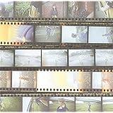 君に届くまで(初回生産限定盤)(DVD付)(特典なし)