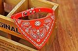 Lautechco 首輪ネッカチーフ 小型アジャスタブルペット犬猫ネックスカーフ (赤)