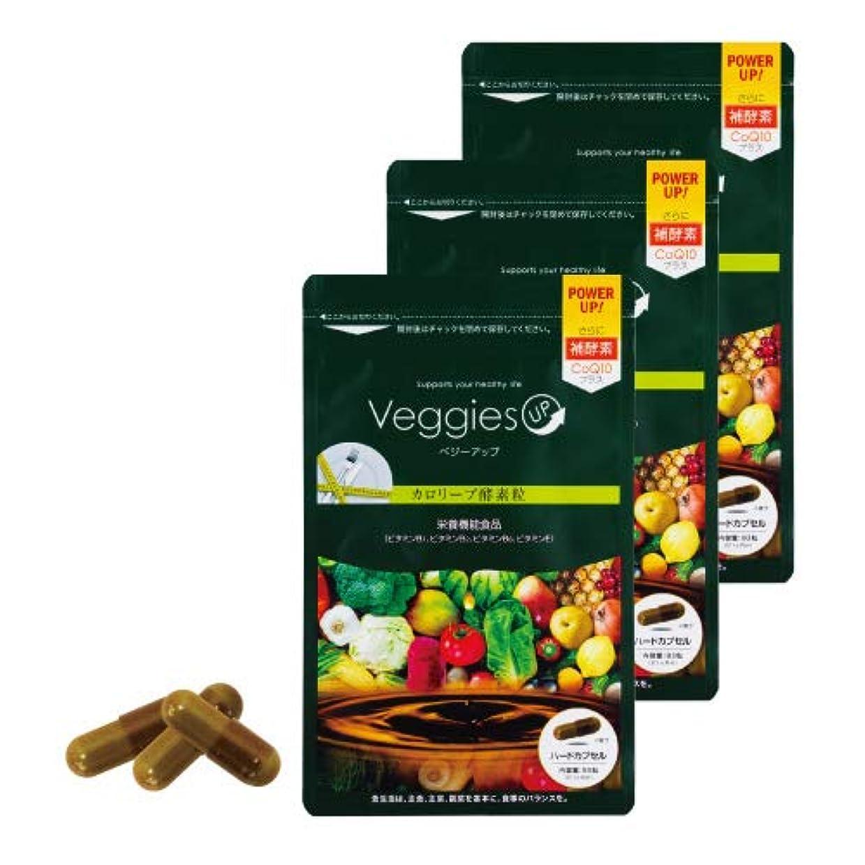 不格好一般的な失敗ベジーアップ酵素粒カロリーブ 93粒 3袋セット ダイエット 酵素サプリ 酵素ダイエット サラシア コエンザイムQ10 竹炭