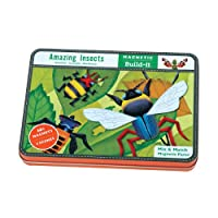 Amazing Insects Magnetic Build-it