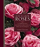 How to Grow Roses: A Directory of Types and Techniques