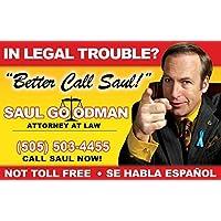 Saul Goodman Fun Fake ID License by Signs 4 Fun [並行輸入品]