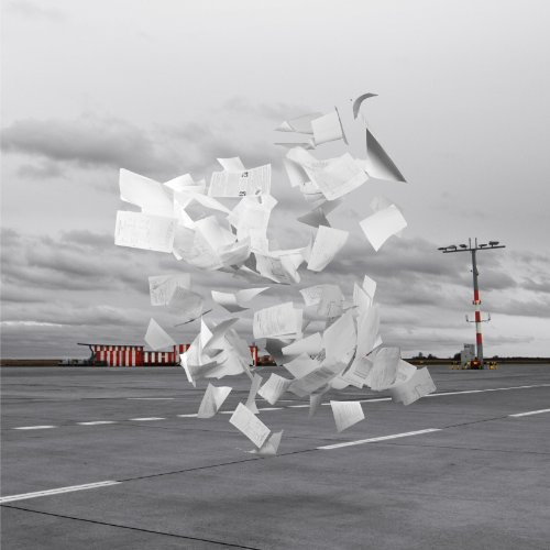 WHITE ASH【Crowds】歌詞を和訳して考察!孤独を感じても…鳥のように群れになって飛ぼう♪の画像
