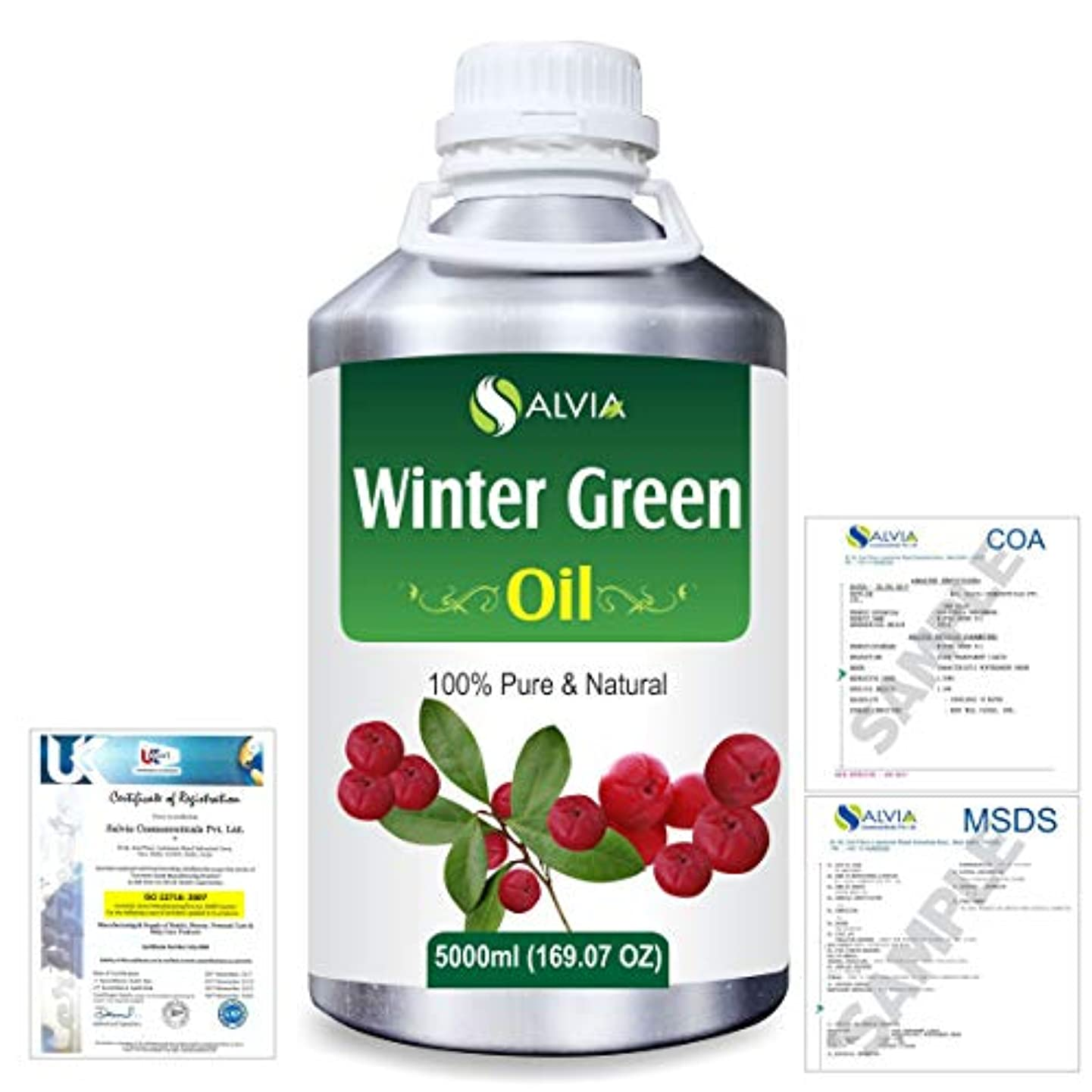 略奪エンジニア偶然Winter Green(Gaultheria Procumbens) 100% Natural Pure Essential Oil 5000ml/169fl.oz.