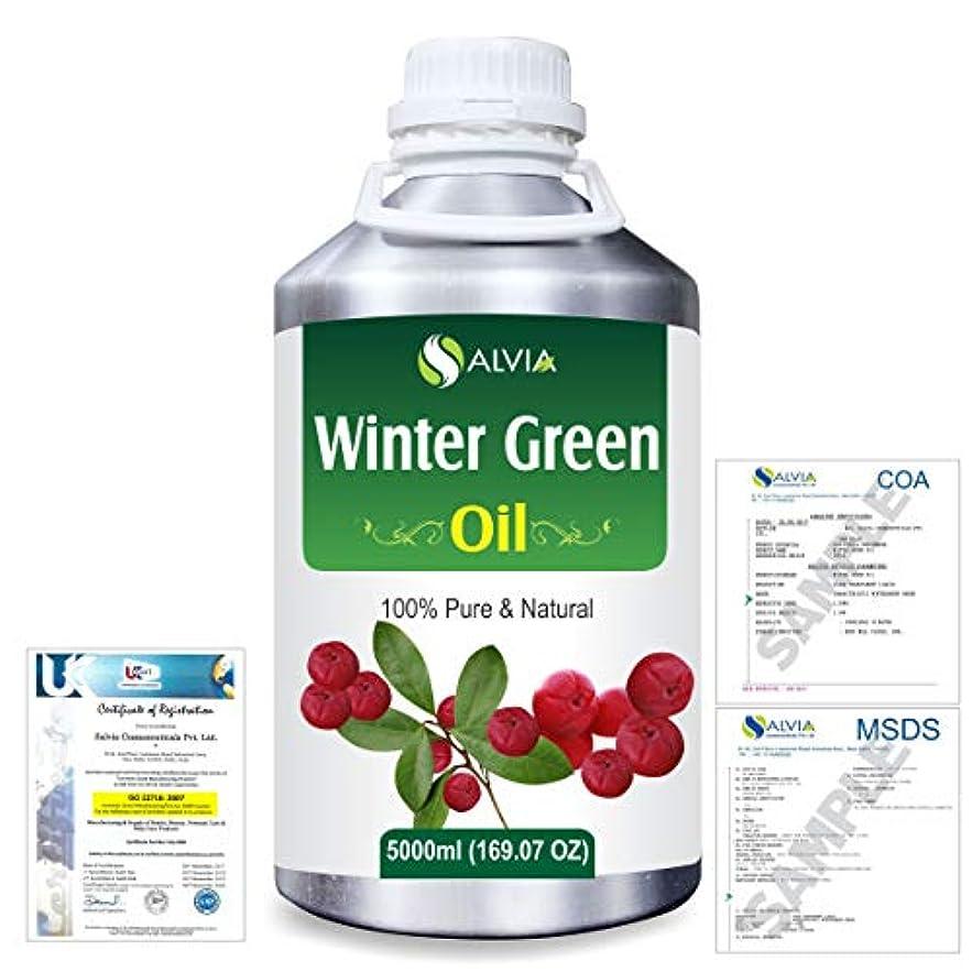 フローティング悲鳴変なWinter Green(Gaultheria Procumbens) 100% Natural Pure Essential Oil 5000ml/169fl.oz.