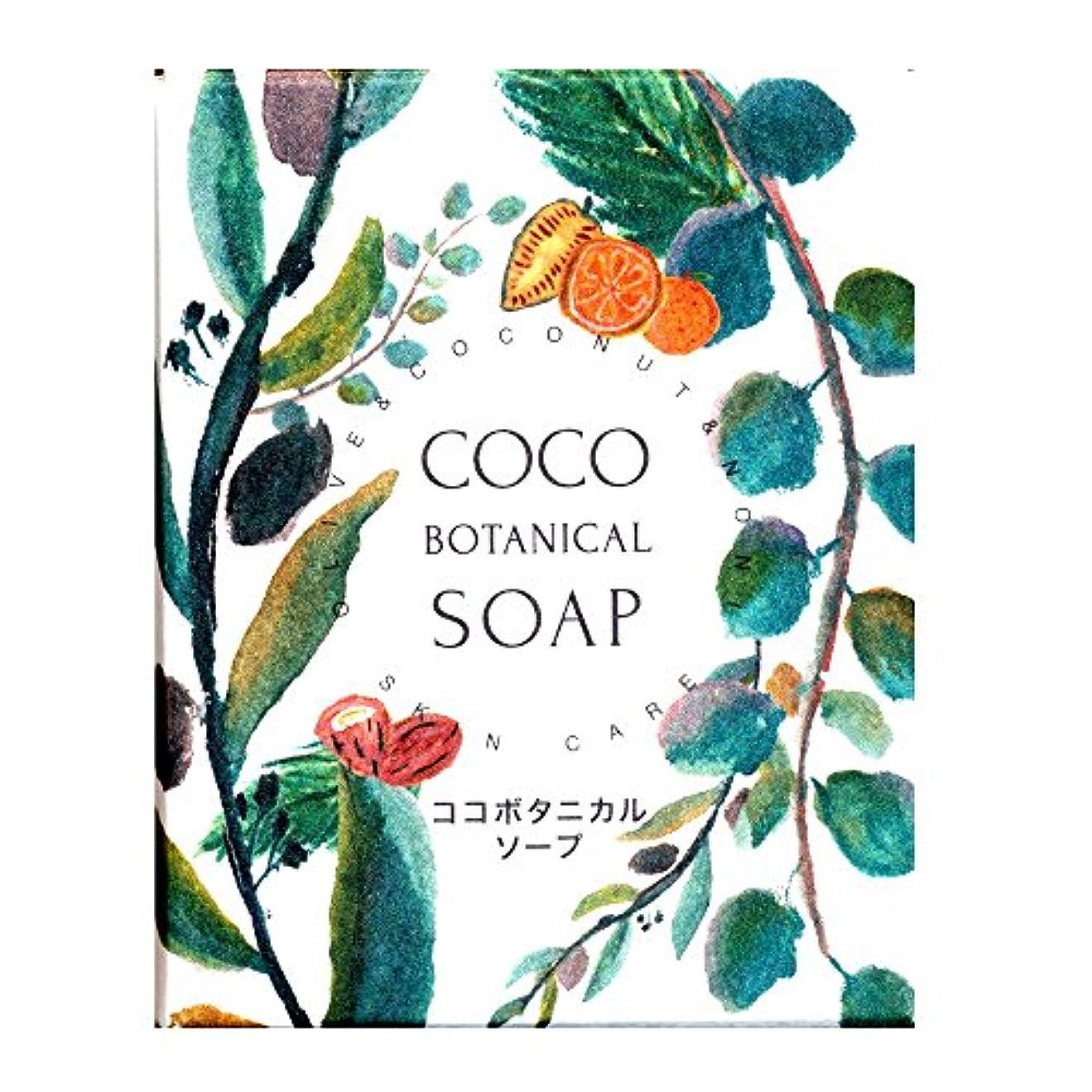 休み主人忌み嫌うココ ボタニカルソープ 95g (洗顔石鹸)