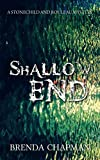 Shallow End (Stonechild and Rouleau Mystery)
