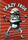 Presents Crazy Video Hits / DVD Import