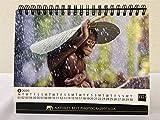 ネイチャーズベストフォトグラフィーアジア 卓上カレンダー2020 画像