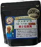 COE2位 グァテマラ「エル・インヘルト」珈琲豆100g(中煎り) (粉(中挽き))