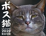 ボス猫カレンダー2020 ([カレンダー]) 画像