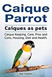 Caique parrot. Caiques as pets. Caique Keeping, Care, Pros and Cons, Housing, Diet and Health. (English Edition)