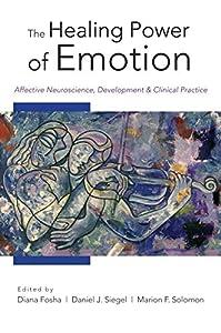 Norton Series on Interpersonal Neurobiology 9巻 表紙画像