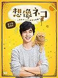 想像ネコ~僕とポッキルと彼女の話~ DVD-BOX
