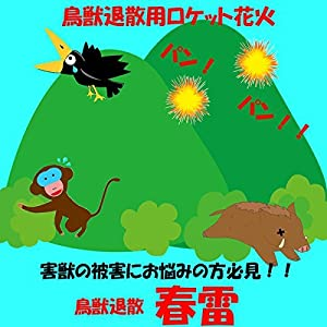 ロケット花火 鳥獣退散 春雷(100本入)点火用線香付
