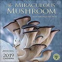 The Miraculous Mushroom 2019 Calendar: With Fabulous Fungi Facts