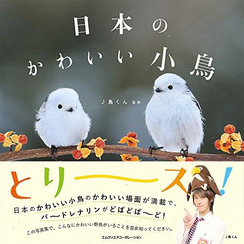 日本のかわいい小鳥の詳細を見る